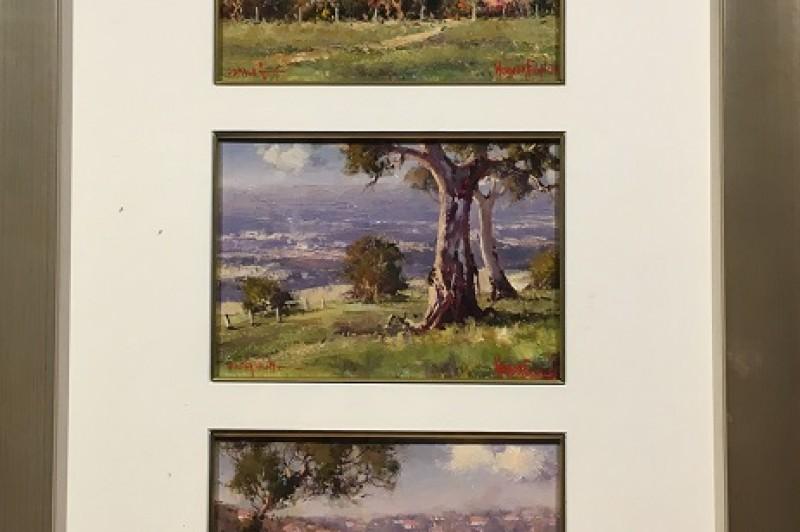 3 in 1 combination - Cremorne, Sofala, Hunter Valley